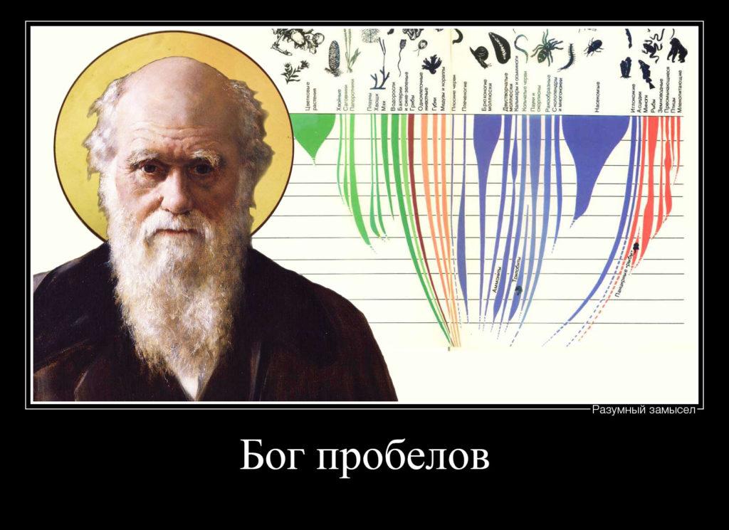 Дарвин бог пробелов Демотиватор
